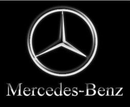 SUBFAMILIA DE MERCE  Mercedes
